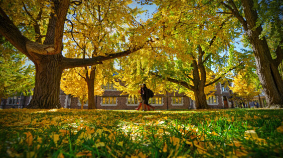 Students walking on campus during Fall season