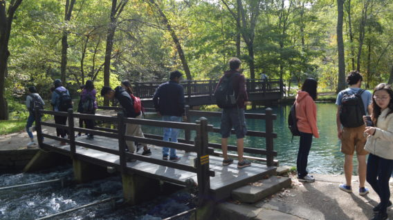 International students and scholars observe the Missouri Department of Conservation fisheries operation at Maramec Springs Park
