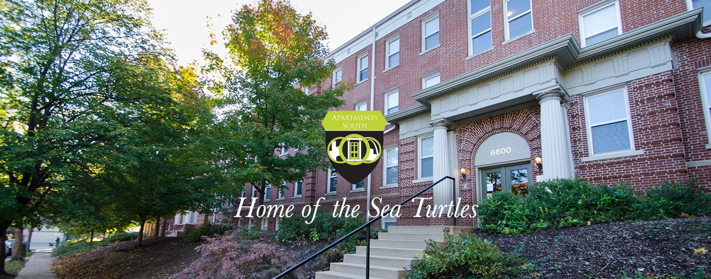 Apartments South crest - Home of the Sea Turtles