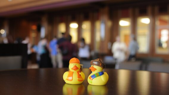 Rubber ducks in the DUC
