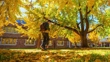 Student walking in fall leaves
